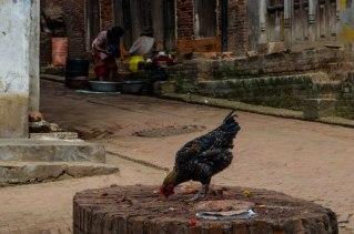 Bhaktapur (11)