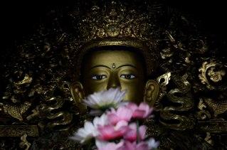Buda (2)