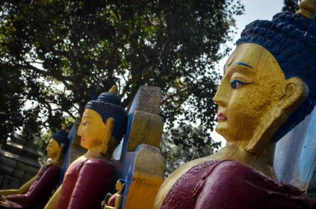 Swayambunath (2)