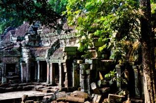 5 templo de Ta Prohm