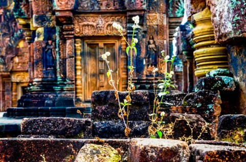 80 Templo Banteay Srey
